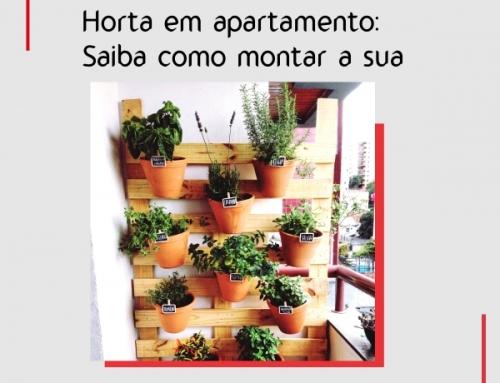 Horta em apartamento: saiba como montar a sua